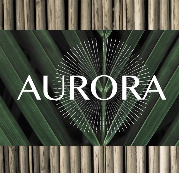 Création de logo Aurora, Créateur de bijoux et tambours chamaniques